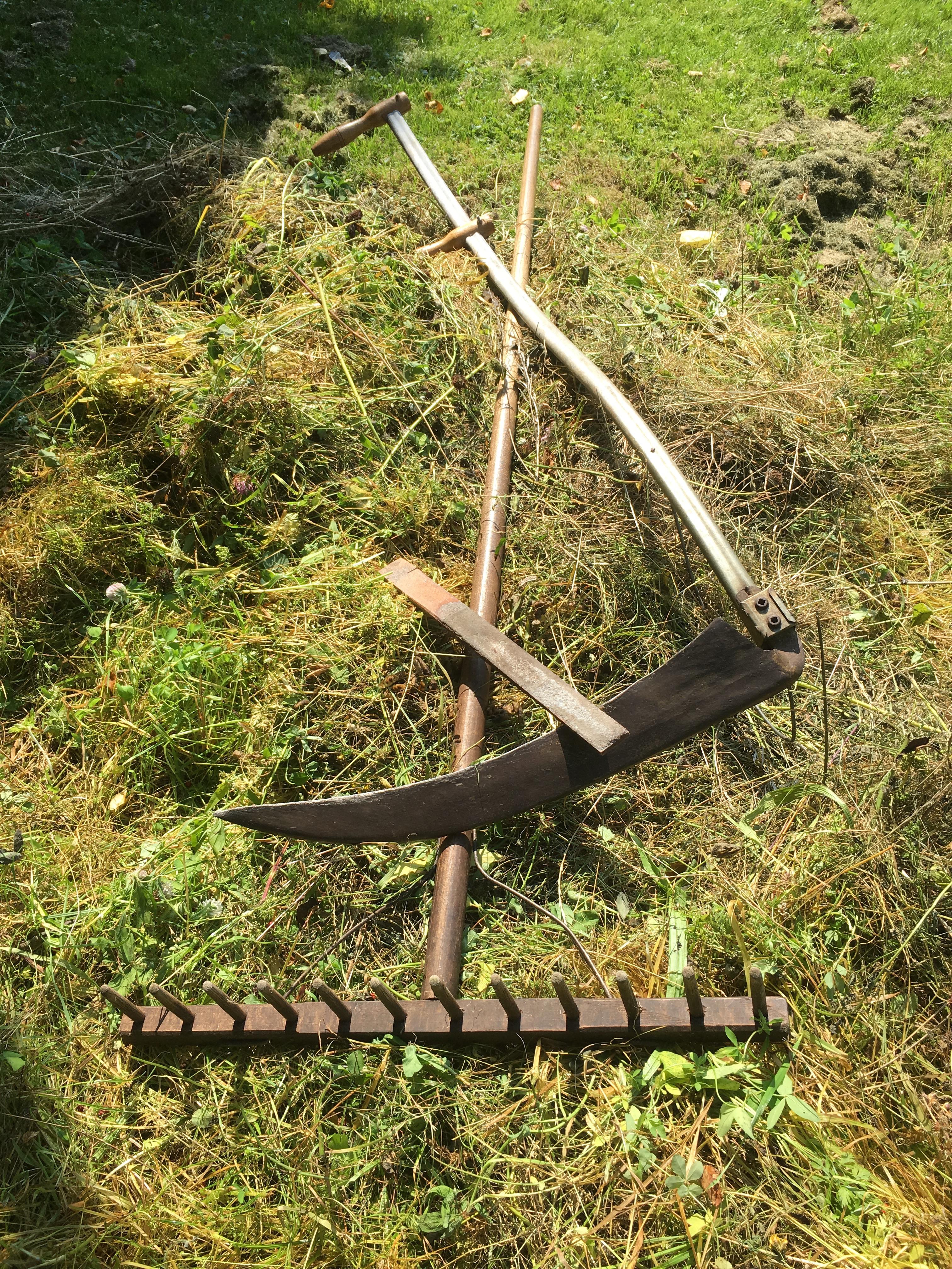 Mein Gerät: eine Sense mit Wetzstein und eine Holzharke zum Wenden