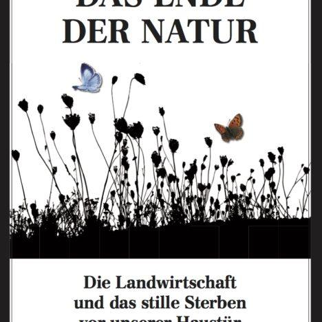 """""""Mörderfliege"""" im Garten"""